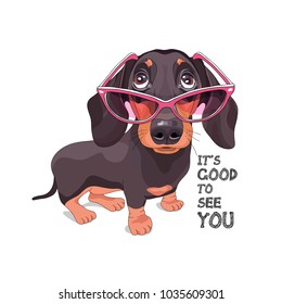 Dachshund in a pink glasses. Vector illustration.
