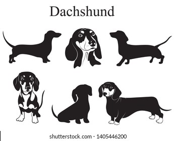 Dachshund set. Collection of pedigree dogs. Black white illustration of a dachshund dog. Vector drawing of a pet. Tattoo.