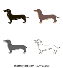 Dachshund vector icon in cartoon style for web