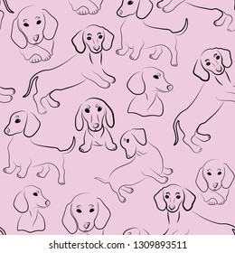 dachsund cute animals fashion seamless vector pattern