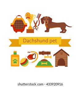 Dachsund dog infografic concept with dog care isolated elements.
