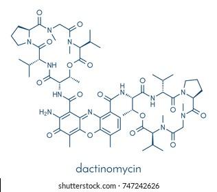 Dactinomycin (actinomycin D) cancer chemotherapy drug molecule. Skeletal formula.