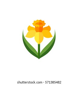 Daffodil - Symbol of Wales, UK, St. David day, vector illustration