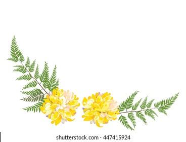 Dahlia flower .yellow flower with fern on white background ,vector illustration