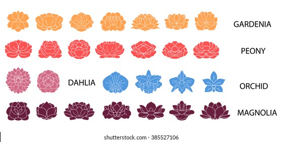 Dahlia, magnolia, orchid, gardenia, peony flower colorful collection. Set of flat thin line modern icons.