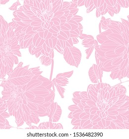 Dahlia. Seamless pattern of pink line dahlia flowers. Floral background.