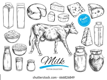Dairy products vector collection. Cow, milk products, cheese , butter, sour cream, curd, yogurt. Farm foods. Farm landscape with cow.  Hand drawn illustration. Isolated objects on white