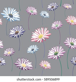 Daisies seamless pattern. Vector illustration on grey background