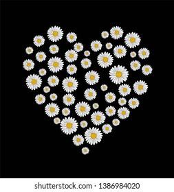 daist flover heart embroidery print