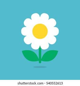 Daisy flower icon vector isolated