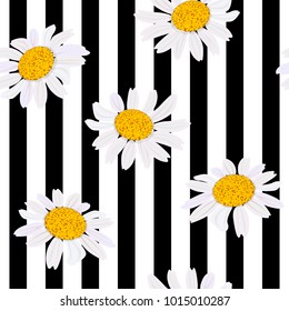 Daisy flowers. Seamless pattern. Vector illustration. black and white stripes