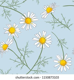 Daisy flowers with twigs on a pale blue background. Vector seamless pattern.