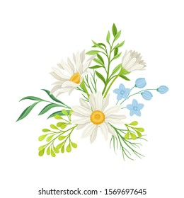 Daisy Flowers Vector Composition. Field Chamomile Blossom Concept