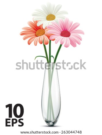 Daisy Glass Vase On White Isolated Stock Vector Royalty Free