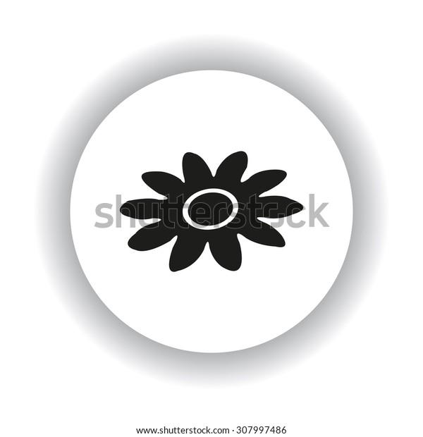 daisy. icon. vector design