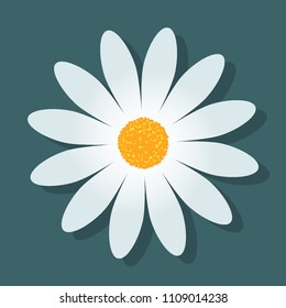 Daisy isolated on blue background. Flat icon with shadow