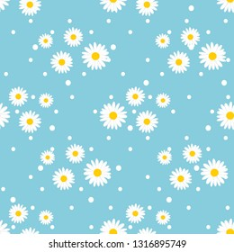 Daisy seamless pattern, White daisies on  blue background.