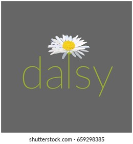 daisy text vector illustration. card. greeting. name logo.