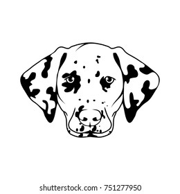 Dalmatian dog icon.Dog collection