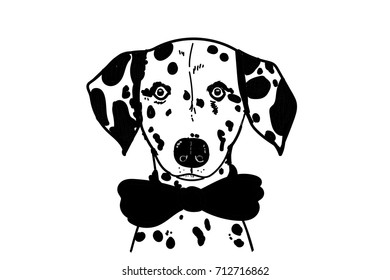 Dalmatian vector dog cartoon puppy art pet animal wallpaper face background isolated black bow spotted polka dot