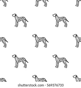 Dalmatian vector icon in black style for web