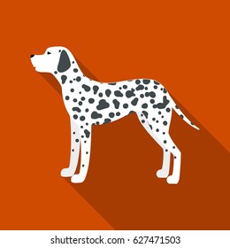 Dalmatian vector icon in flat style for web