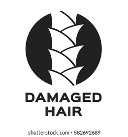 damaged hair icon and vector