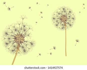 3ea8ca7f944 Dandelion background for your design. The wind blows dandelion seeds.  Template for posters,. Christmas greeting card ...