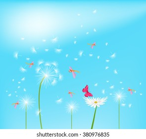 Dandelion flower field over blue sky
