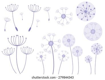 Dandelion Flower Package Vector