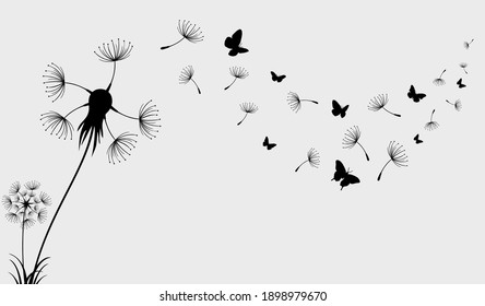 Dandelion with flying butterflies and seeds, vector illustration