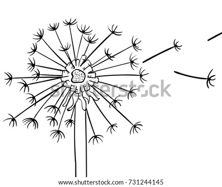 Plant Diagram