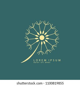Dandelion logo vector illustration. Dandelion icon