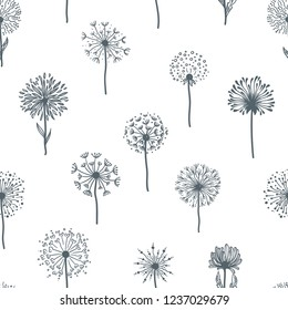 Dandelion old plant with seeds, monochrome sketches outline, seamless pattern