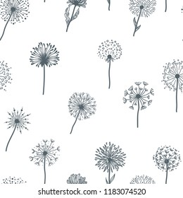 Dandelion old plant with seeds sketches outline,  pattern vector