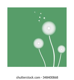 Dandelion on a green background. Vector illustration