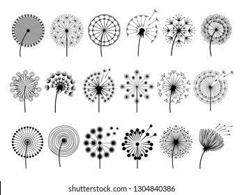 Dandelion silhouettes. Herbal illustrations flowers decoration concept vector botany illustrations
