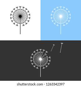 Dandelion symbols. Taraxacum flower icons. Vector illustration isolated on white, blue and black background