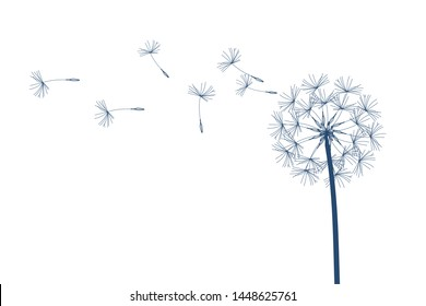 Dandelion vector. Make a Wish. Simple minimalist style.
