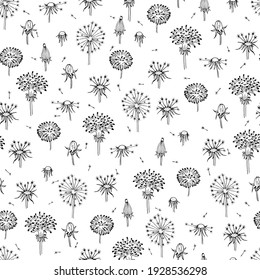 Dandelions seamless. Fly seeds of dandelion. Summer background with black flowers and flying seed.
