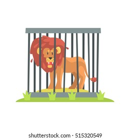 Dangerous Lion With Big Mane Standing Behind The Cage Bars In The Zoo