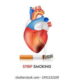The dangers of smoking Effects of smoking, the risk of heart disease. No smoking, World No Tobacco Day. 3D Vector EPS10 illustration