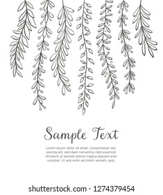 Dangling plants background. Hand drawn floral background isolated on white background. Vector illustration.