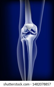 Dark blue transparent view of bones the of knee