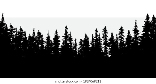 Dark forest. Natural abstract landscape background. Realistic vector illustration. Stock image. EPS 10.