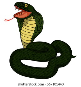 dark green a king cobra with fangs vector illustration