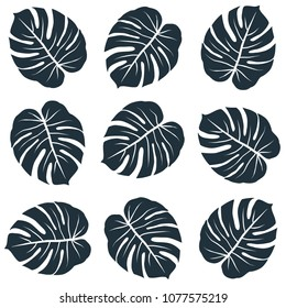 dark monstera leaves in regular rows graphic exotic seamless pattern on white background