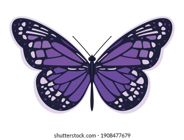 Dark purple butterfly. Vector illustration on a white background.