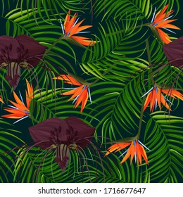 Dark purple Tacca flower and strelizia background. Tropical exotic plant seamless pattern.