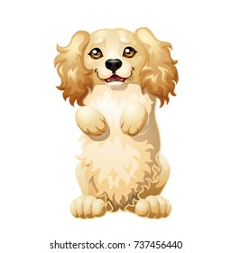 The darling puppy light-red Cocker Spaniel costs on hinder legs. A yellow dog a symbol 2018 new years according to the Chinese calendar. A cartoon vector illustration isolated on white.